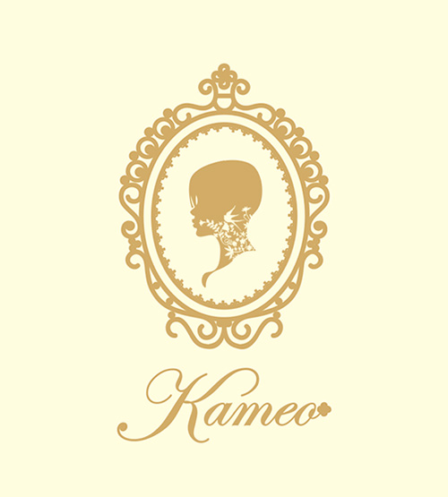 about-kameo2